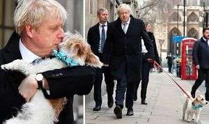 Boris-Johnson-votes-PM-kisses-dog-at-polling-station-compressor