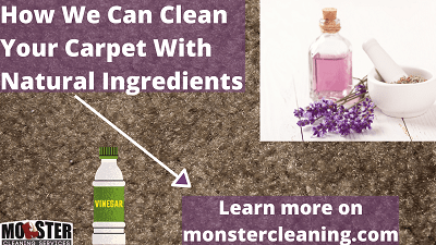 natural carpet cleaning (1)