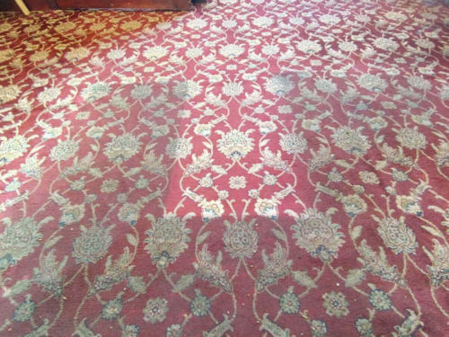 Carpet Cleaning Effects 3